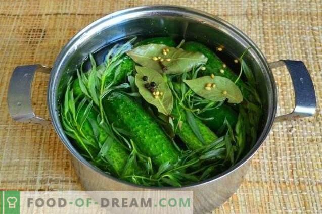 Pepinos salados con estragón