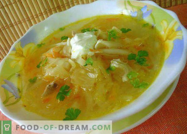 Zuppa di crauti in una pentola a cottura lenta, ricette con carne di maiale, funghi, fagioli, pollo, classico