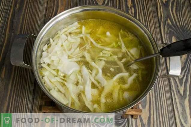 Sopa de repollo fresco