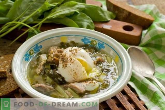 Sopa de acedera con carne y huevo