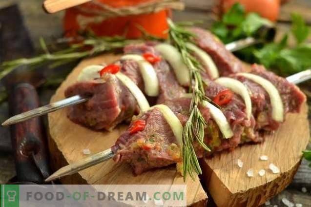 Kebab de carne jugosa