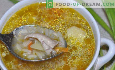 Pepinillos con arroz y pepinillos, recetas con pescado, champiñones, pasta de tomate