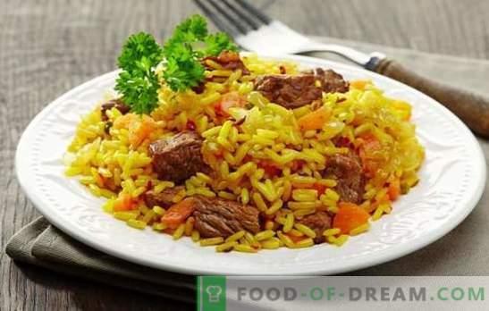 ¿Qué tan sabroso es el pilaf dietético o vegetal en una olla de cocción lenta? Una selección de recetas para un sabroso pilaf en una cocina de varios tipos de carne o pescado