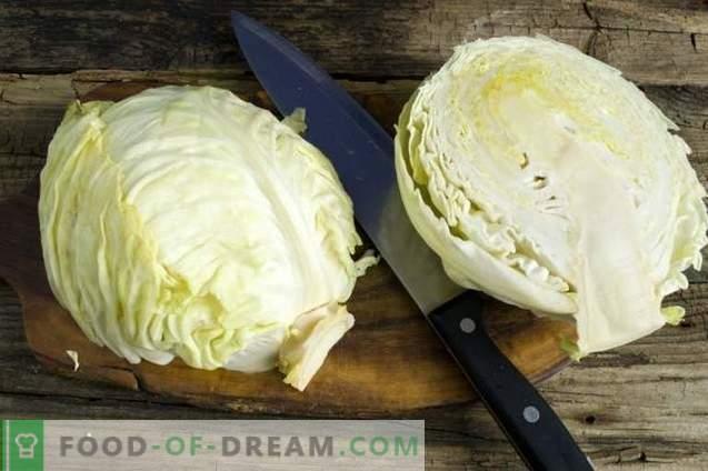 Escalope vegetariano de col