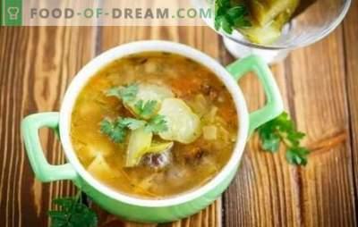 Pickle con setas - una sopa aromática. Recetas de lo simple a lo muy simple: cocinamos encurtidos caseros con champiñones y carne sin carne.