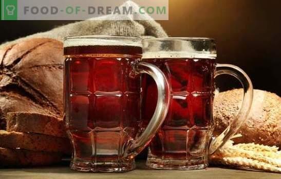 El kvass casero de galletas es una bebida refrescante, saludable y sabrosa. Las mejores recetas para hacer kvas a partir de galletas en casa
