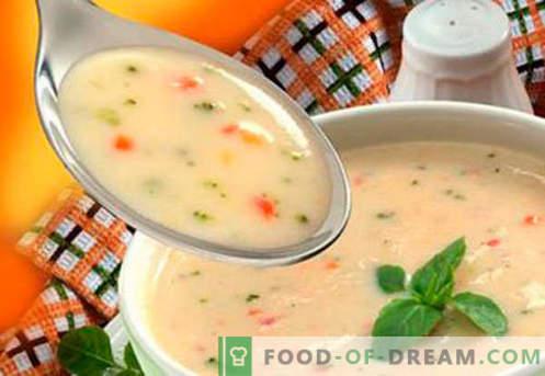 Sopas para niños - Recetas probadas. Cómo cocinar adecuadamente y sabrosas las sopas para niños.