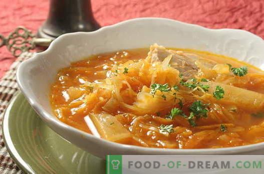 Sopa de repollo - las mejores recetas. Cómo cocinar correctamente y sabrosa la sopa de repollo.