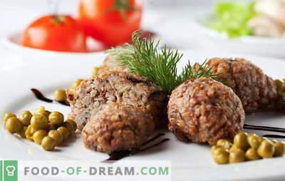 Las chuletas de alforfón son una excelente manera de amar el alforfón. Recetas de chuletas de alforfón con champiñones, carne picada, hígado, queso y verduras