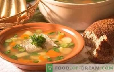 Ahvena kalasupp - maitsev supp kodus. Kuidas valmistada kõrva ahvenast: saladused, retseptid, nõuanded
