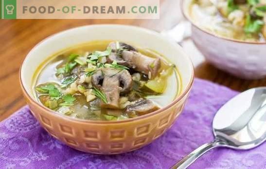 La sopa de champiñones con cebada perlada es un plato abundante y fácil de cocinar. Recetas originales de sopa de champiñones con cebada perlada