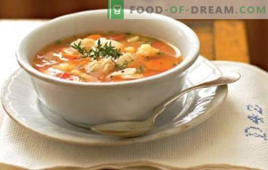 La oreja con mijo es simple, satisfactoria y útil. Recetas deliciosa sopa de pescado con mijo de río y pescado de mar en la estufa y en la olla de cocción lenta