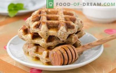 Recetas para gofres simples con margarina, mantequilla, leche, requesón, kéfir. Cómo hacer waffles simples en una sartén, en un waffle-iron, horno