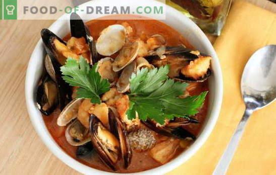 Sopa de mariscos: mejillones, camarones, calamares, pulpos. Recetas para cocinar sopa con mariscos para todos los gustos