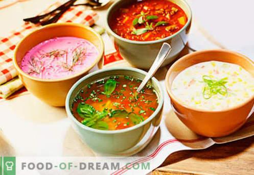 Sopas frías - recetas probadas. Cómo cocinar deliciosas sopas frías con salchicha o arenque