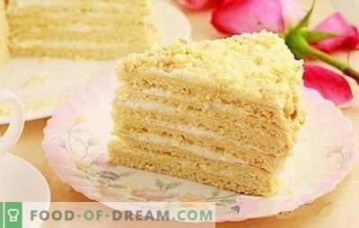 Pastel clásico de crema agria - un postre suave para todas las ocasiones. Tarta clásica de crema agria con gelatina, cereza, cacao, canela