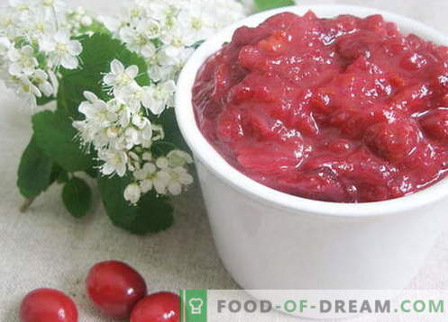 Salsa de arándanos - las mejores recetas. Cómo cocinar adecuadamente y sabrosa la salsa de arándanos.