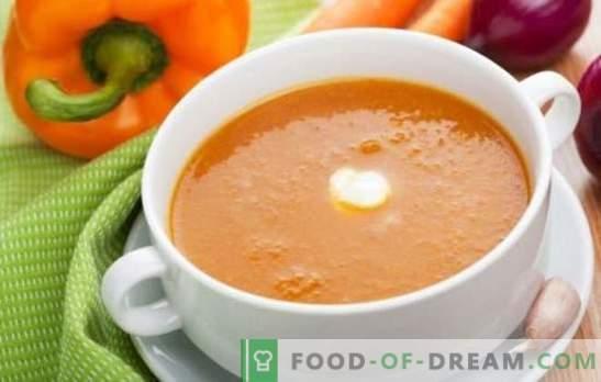 Sopa de crema de verduras - un primer plato delicado. Cocinando deliciosas sopas de verduras: tomate, calabacín, calabaza, brócoli, espinaca, pimienta