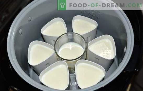 El yogur en una olla de barro en frascos es un manjar sabroso y saludable. Variedades de yogurt del multicooker en tarros