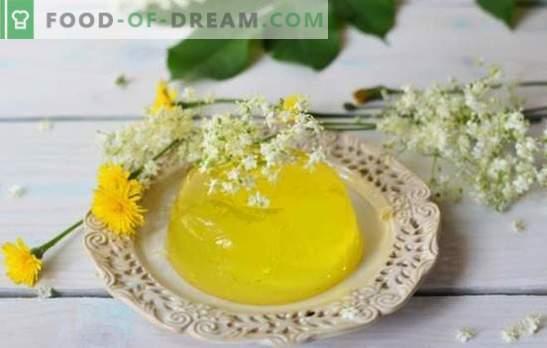 Gelatina de limón - postre sabroso, que siempre es el camino. Términos de cocción y variaciones de platos a base de gelatina de limón