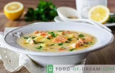 La sopa de queso procesado es un plato gourmet simple. Las mejores recetas de sopas de queso a partir de queso procesado