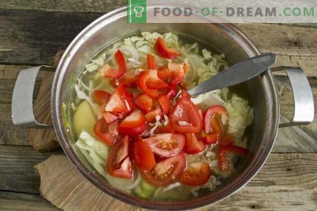 Sopa de verduras de verano en caldo de pollo