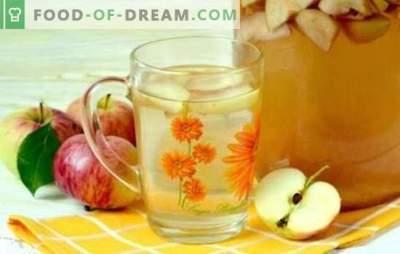 Compotul de mere în cutii de 3 litri este o băutură naturală pentru întreaga familie. Cele mai bune retete pentru compoturi din mere în borcane de 3 litri