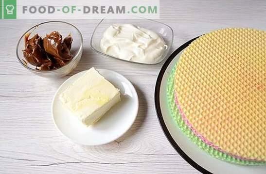 Pastel de waffle: una receta fotográfica paso a paso. Preparar un pastel de gofres a partir de pasteles preparados con leche condensada: ¡sencillo y muy sabroso!