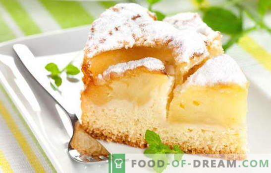 Los muffins caseros son siempre especiales: tartas de kéfir de manzana. Recetas sencillas para masa y rellenos para empanadas de kéfir de manzana