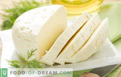 Las mejores recetas para la leche de vaca casera a partir de leche de vaca. Queso de leche de vaca: reglas básicas para la elaboración casera de queso