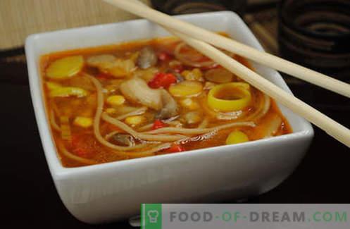Los fideos japoneses son las mejores recetas. Cómo cocinar adecuadamente y deliciosamente los fideos japoneses en casa.
