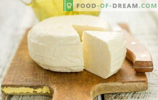 El queso casero de leche y kéfir es un producto delicioso, tierno y, lo más importante, natural. Recetas probadas y originales de quesos caseros de leche y yogurt