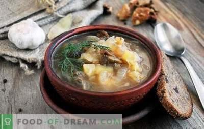 Sopa de Cuaresma: ¡para ayunar y las dietas son buenas! Las mejores recetas tradicionales y originales de sopa magra de carne sin carne y grasa animal