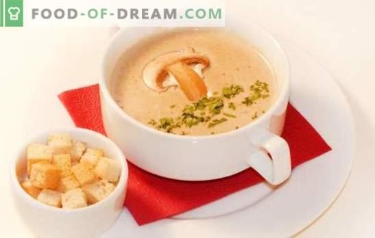 La sopa de crema de champiñones es una versión delicada de tu plato favorito. Las mejores recetas de sopa de crema de champiñones: con crema, con queso, arroz, coñac, camarones