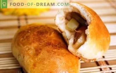 Las empanadas de levadura con manzanas en el horno son hermosas! Recetas de masa y aderezos para empanadas de levadura con manzanas en el horno