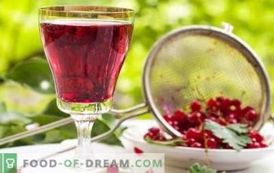 Vino de grosella roja: las principales etapas de elaboración de los vinos de frutas. Recetas para vinos caseros de grosella roja