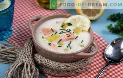 Cocina deliciosa sopa finlandesa: recetas. Sopas finlandesas de pescado rojo fresco, frito, ahumado y enlatado