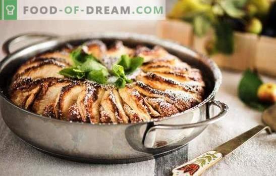 Pastel de manzana con queso cottage - el pastel más delicado. Cómo hacer un pastel de queso con manzanas en el horno y una olla de cocción lenta