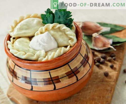 Empanadillas en macetas - las mejores recetas. Cómo cocinar correctamente y sabrosas albóndigas en macetas.