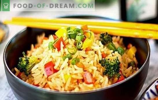Arroz con verduras en una olla de cocción lenta, ¡comido por ambas mejillas! Recetas para diferentes platos de arroz con verduras en una olla de cocción lenta