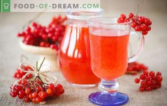 El vino de viburnum en casa es una bebida exótica disponible para todos. Recetas de vino de viburnum en casa