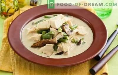 El fricasé en salsa cremosa es un plato sencillo de la cocina francesa. Opciones de cocción para el fricasé en salsa cremosa con champiñones, verduras y queso