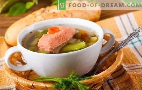 Oreja de trucha: beneficios para el cuerpo y un sabor impecable en un plato. Las mejores recetas de sopa de trucha