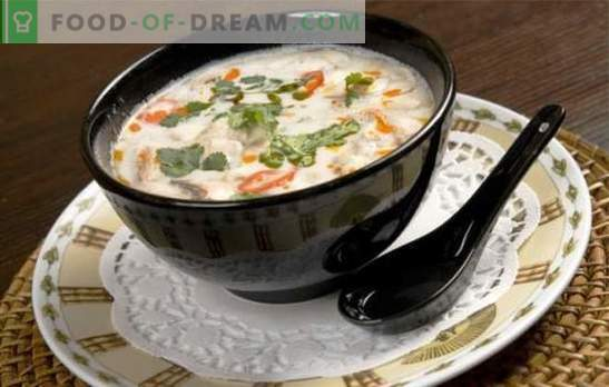 ¡La sopa de leche de coco es un juego de sabor! Recetas para diferentes sopas con leche de coco para un menú exótico