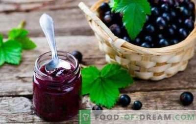 La jalea de grosella negra es una despensa de salud. Cómo cocinar una jalea de grosella negra sabrosa y saludable con cítricos, grosella, frambuesa
