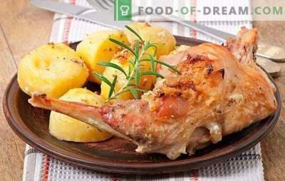 Platos del conejo: receta rápida es un manjar asequible. Platos del conejo - Recetas rápidas para carne sabrosa y tierna