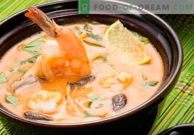 Sopa Tom Yam - recetas probadas. Cómo cocinar la sopa Tom Yam.