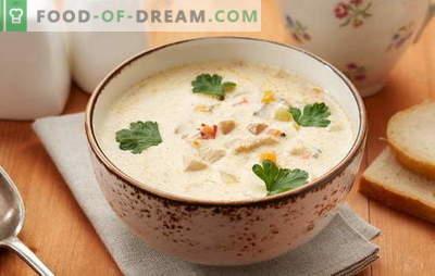 Sopa Pollock - un plato con excelente sabor! Cocinando la correcta sopa de pescado con verduras, huevos, cereales, queso, leche