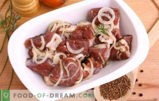 La mejor marinada para kebab de cerdo, ¿qué es? Las mejores recetas de marinadas para kebab de cerdo en kéfir, agua mineral, jugo de granada