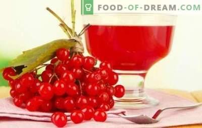 Derivado del viburnum en casa: recetas agridulces de licor ruso. Recetas excelente licor casero de viburnum